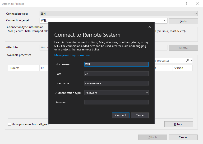 "Diálogo ""connect to remote system"""