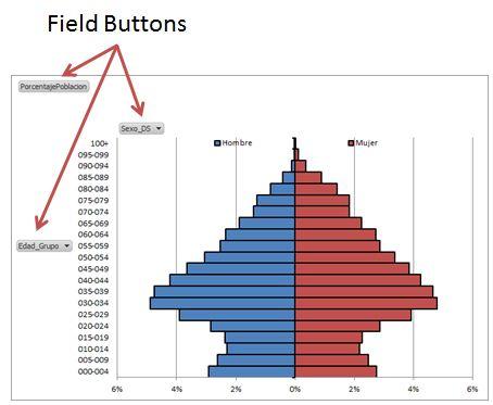 PopulationPyramidsPowerPivot2_38