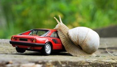 FerrariCaracol